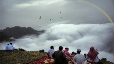 Photo of أبرز 5 مزارات سياحية شهيرة في مدينة أبها
