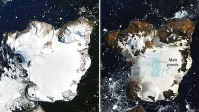 Photo of بصورتين.. ناسا ترصد الكارثة الحقيقية في قعر الأرض