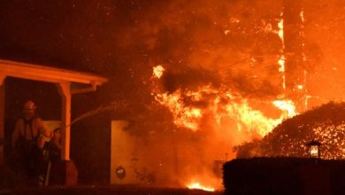 Photo of الجن بريء.. طفلة أحرقت 9 منازل في مصر وفيديو كشَف السبب