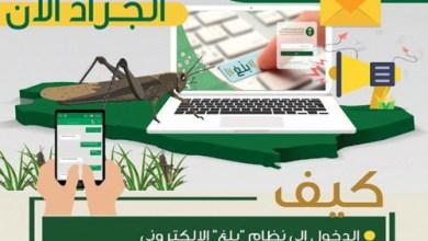 Photo of «البيئة» تطلق خدمة بلاغات الجراد