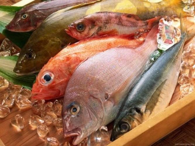 فوائد الاسماك و المأكولات البحرية