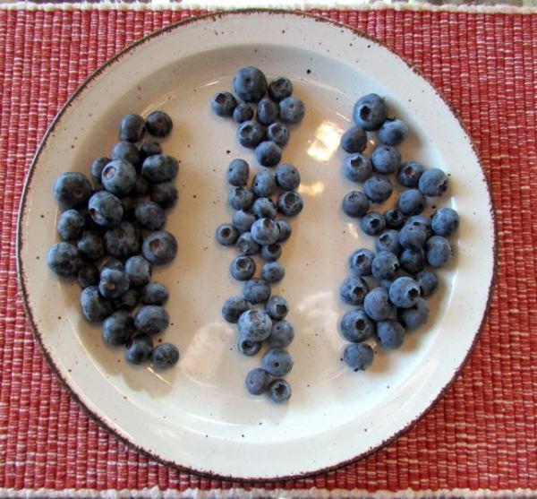Bien Nacido blueberries