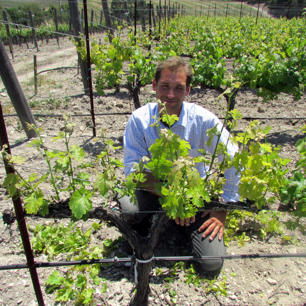 Guillaume Fabre in the vineyard at L'Aventure