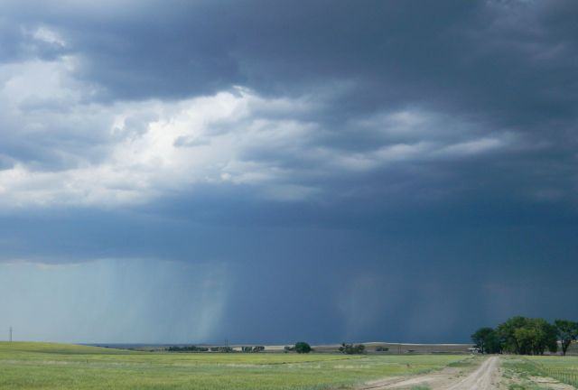 Thunderstorm rains down on wheat fields north of Chadron, NE.