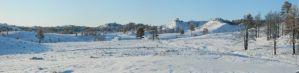 Snow fall on the Ponderosa Pine Ridge, Whitney, Nebraska