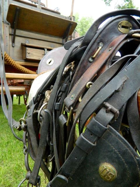 US Calvary harness and saddle balance on the tongue of the chuckwagon.