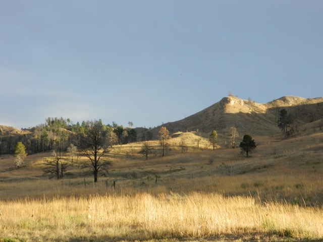 Sunset gold highlights our late winter grasses and buttes.