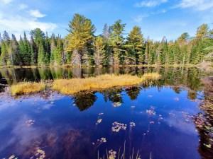 Algoquin NP: Mizzy Lake Trail