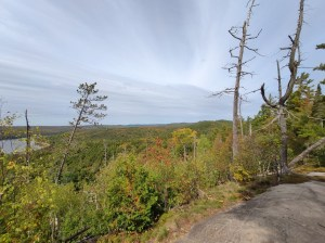 Agonquin Nationalpark: Lookout Trail