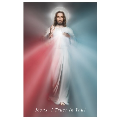 The Divine Mercy Image Gallery Wrapped Canvas