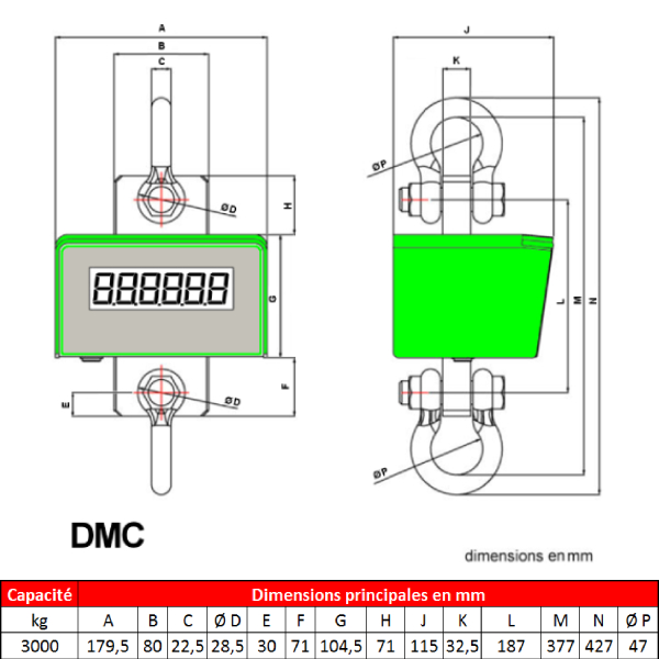 Peson DMC  3 000 kg avec batterie interne