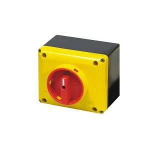 Interrupteur sectionneur 3P cadenassable en coffret •           32 A