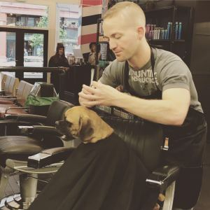 A hair stylist gives a trim to a dog sitting in his chair