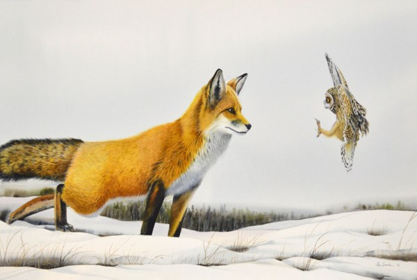 Fox And Owl Confrontation Animals . Michelson Galleries