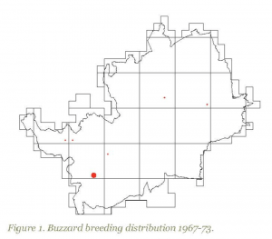 Buzzard map, Herts, 1967-73