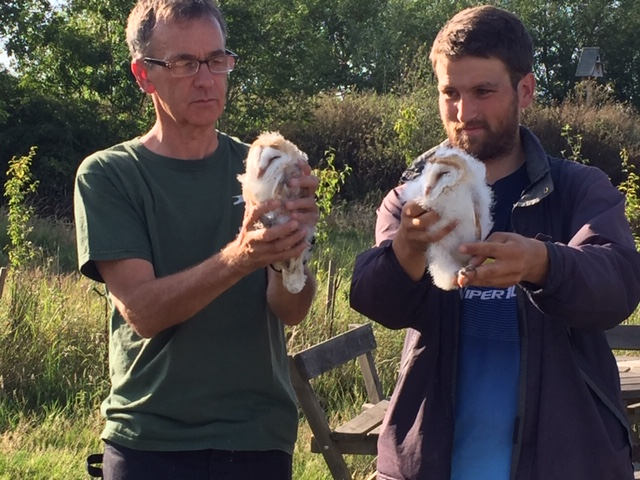 Gordon Duns and Daniel Whitelegg were the lucky ringers with these owlets