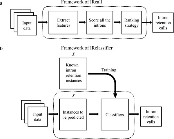 IRcall and IRclassifier
