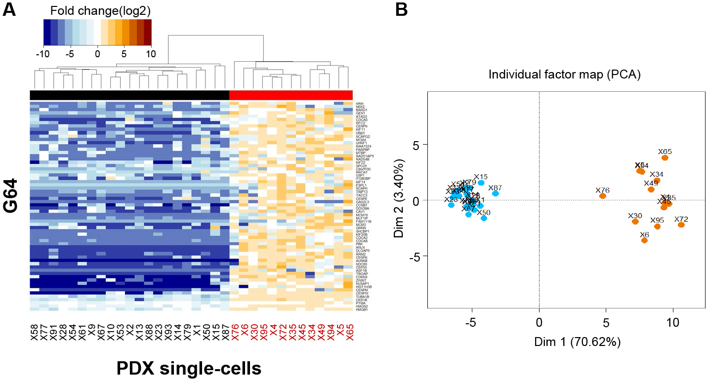 Single Cell Rna Sequencing Identifies Tumor Subpopulations