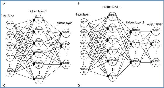 Using neural networks for reducing the dimensions of