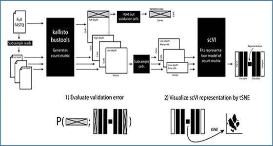 Quantifying the tradeoff between sequencing depth and cell
