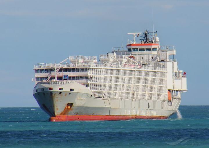 Gulf Livestock 1 vessel off the shores of Malaga in 2018.