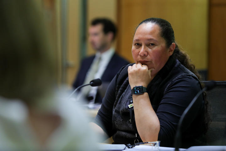ACT MP Nicole McKee in committee