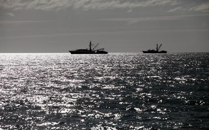 Commercial fishing boats in Tasman Bay, Nelson
