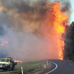 Bush fire causes road closure on Coromandel Peninsula