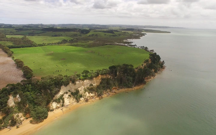 Drone shot of Kaipara Harbour with farm land of South Head in foreground, New Zealand