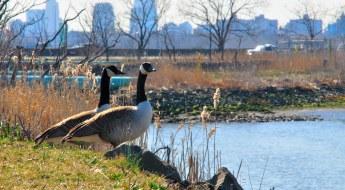 4 Best Ways to Relax and Unwind in Lyndhurst, NJ