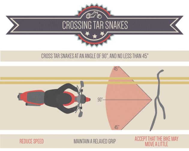 crossingTarSnakes.WEB