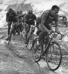 pro cyclists carrying metal bidons