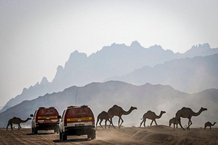 la nuova Dakar si corre in Arabia Saudita