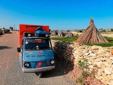 in-ape-in-africa-marocco-villaggio