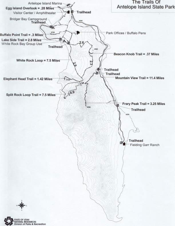 Nos conseils pour visiter Antelope Island State Park et le