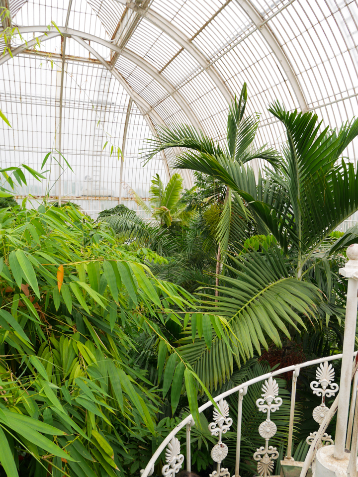 Kew-Garden-London-UK-Palm-House-dome 2
