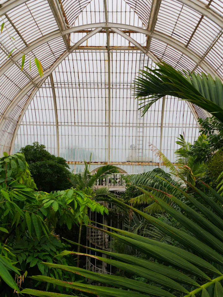 Kew-Garden-London-UK-Palm-House-dome