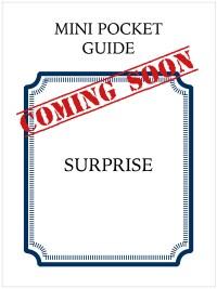 next-mini-guide-cover