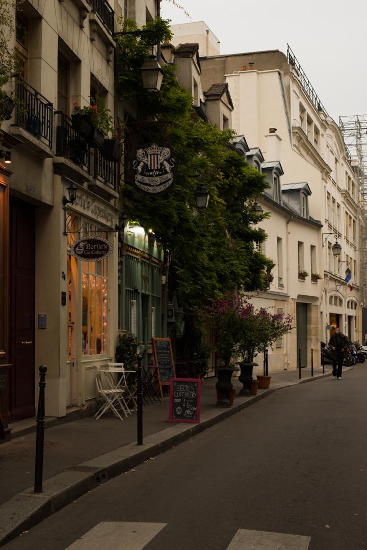 Paris - France - Ile de la Cité