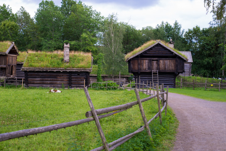 Norskfolkemuseum Oslo - Norway - open air museum - farmstead and happy cow