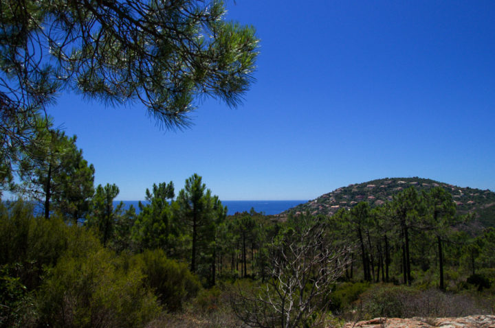 View of the Mediterranean sea from the Esterel, France - Learn more on roadtripsaroundtheworld.com