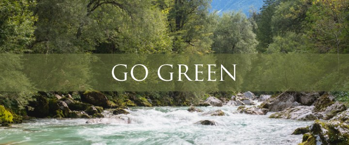 How Traveling can help you go Green