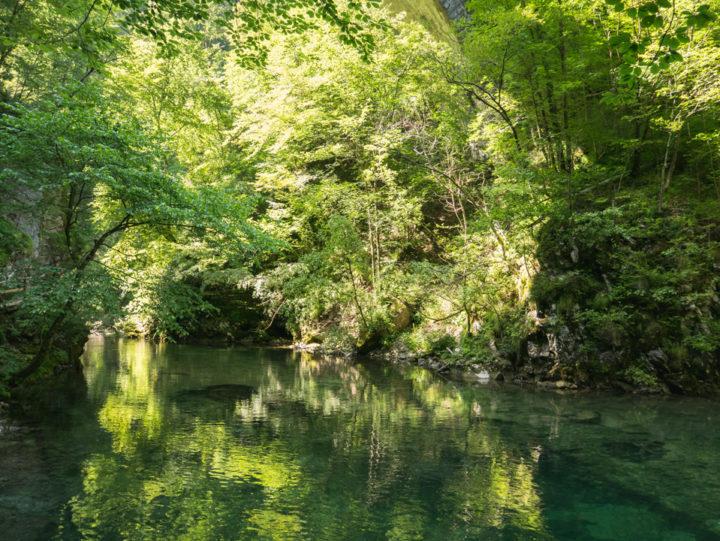 A quiet Radovna river in the Vintgar Gorge in Slovenia - Learn more on www.RoadTripsaroundtheWorld.com