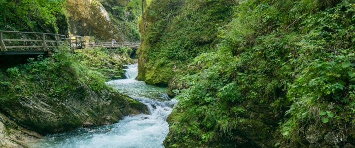 The Vintgar Gorge in Slovenia: Where nature puts up quite a show!