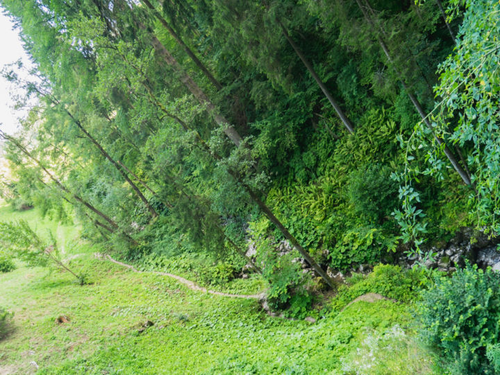 path-to-the-caves-predjama-castle-slovenia-learn-more-on-www-roadtripsaroundtheworld-com