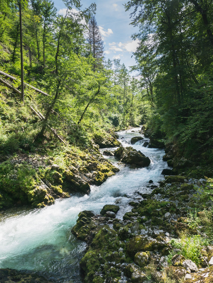 The Vintgar Gorge in Slovenia - Learn more on www.RoadTripsaroundtheWorld.com
