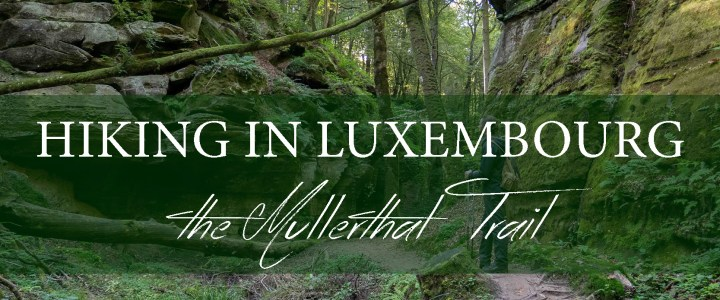 Hiking in the Mullerthal, one of the most spectacular region of Luxembourg