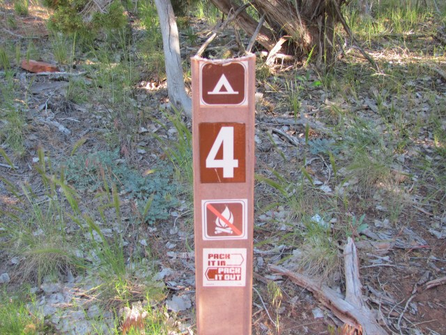La Verkin Creek Trail in Kolob Canyon, Campsite #4