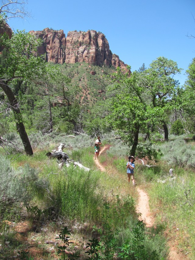 Hike to Kolob Arch on La Verkin Creek Trail in Kolob Canyon: Zion National Park