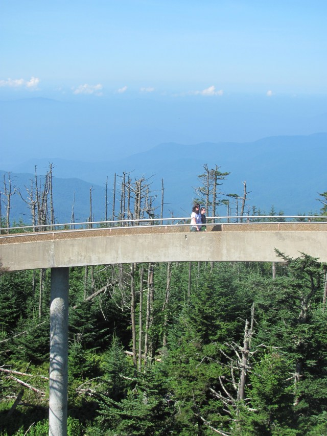 Clingmans Dome Observation Tower in Great Smoky Mountains National Park
